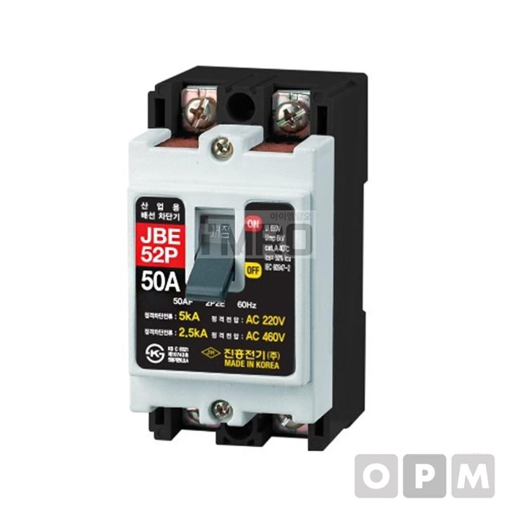 진흥전기 배선용차단기 JBE-102P (100A)